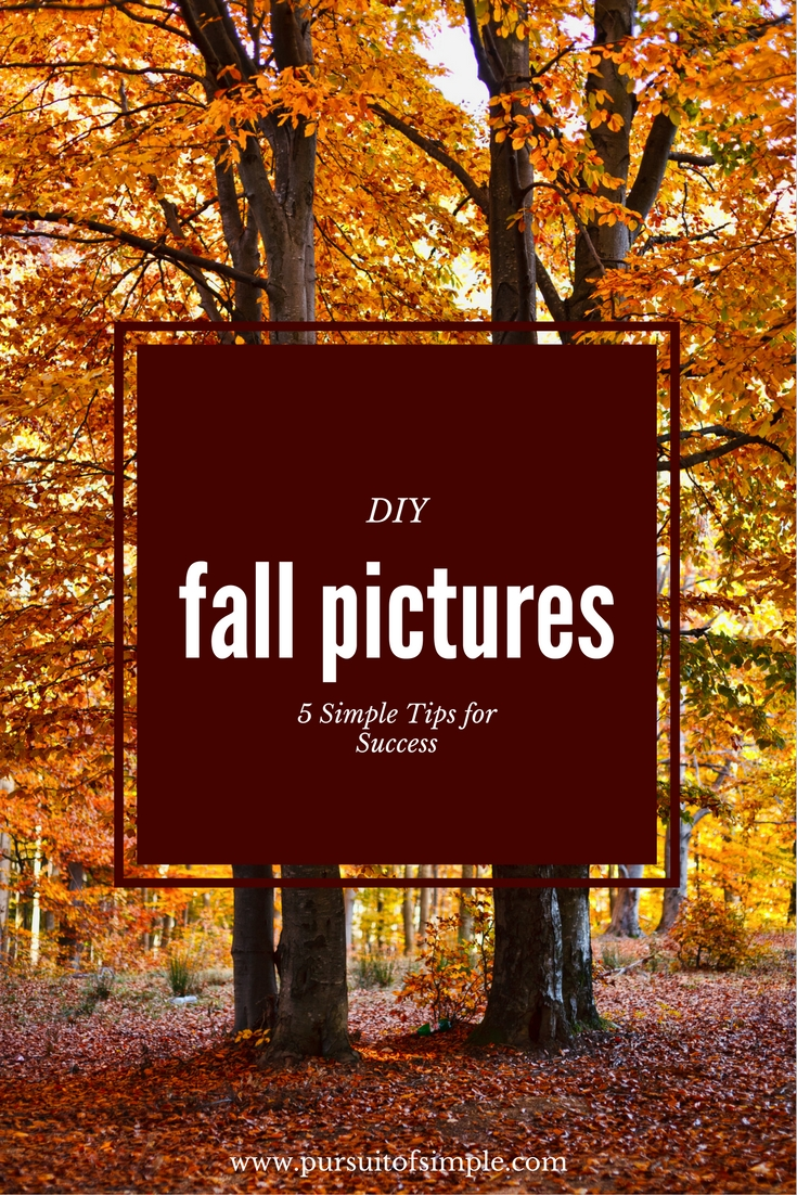 diy-fall-pictures_5-simple-tips
